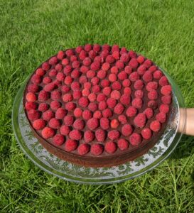 עוגת שוקולד ללא גלוטן צילום:אסי רוזיצנר