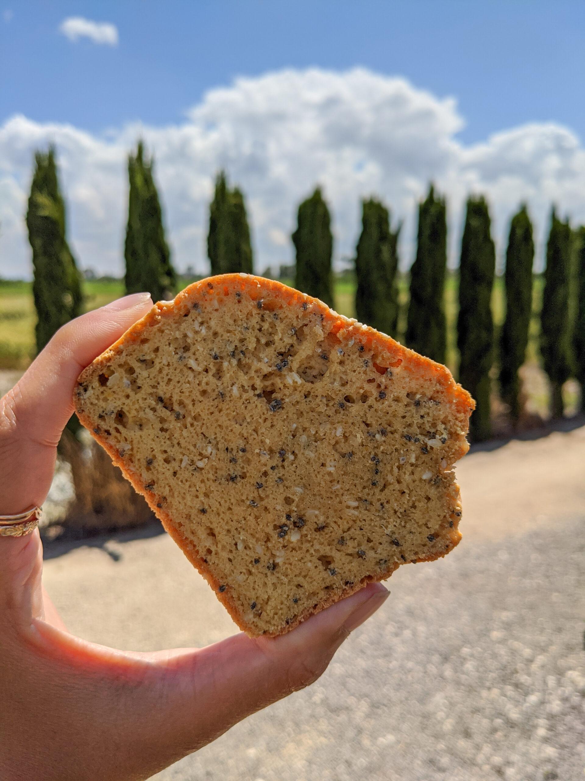 לחם עדשים כתומות צילום:אסי רוז